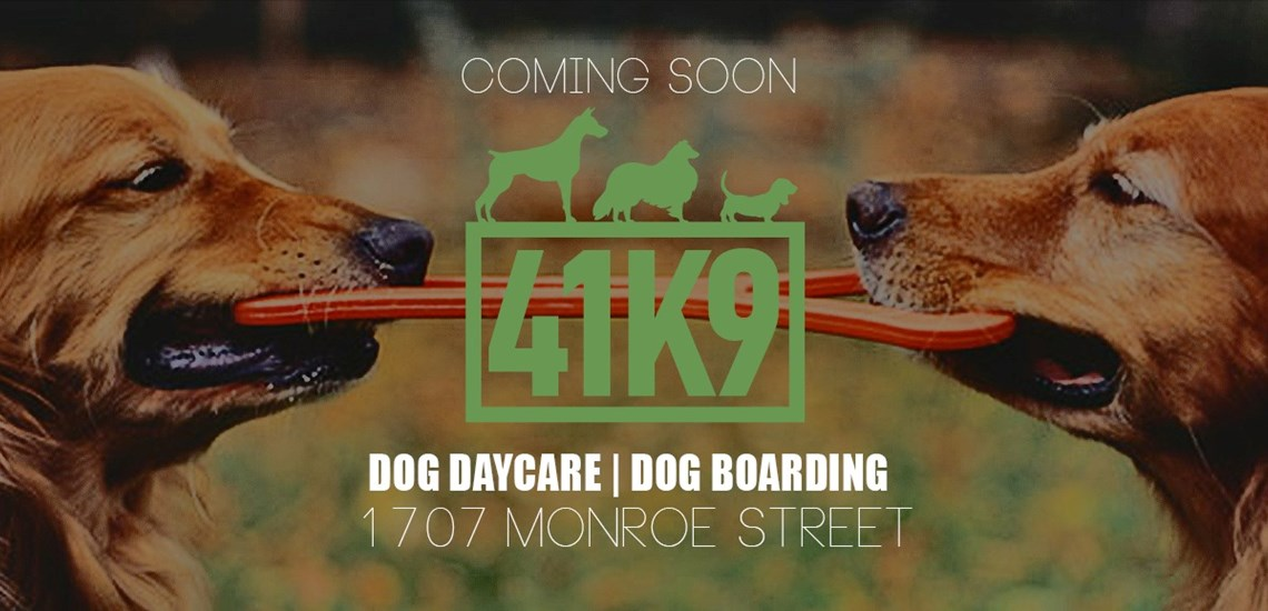 41K9 Brings Dog Daycare and Boarding to Downtown